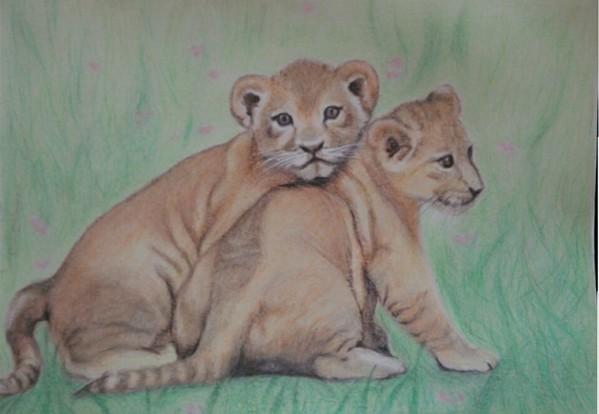 ライオンの兄弟