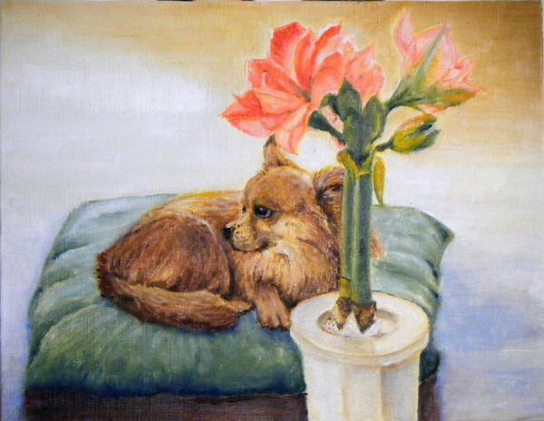 愛犬とアマリリス