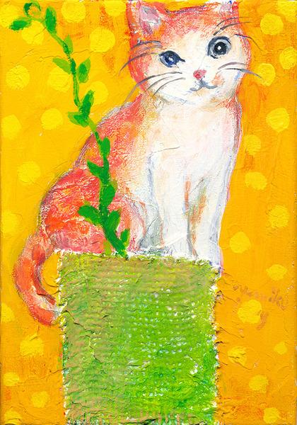 プランター猫の花
