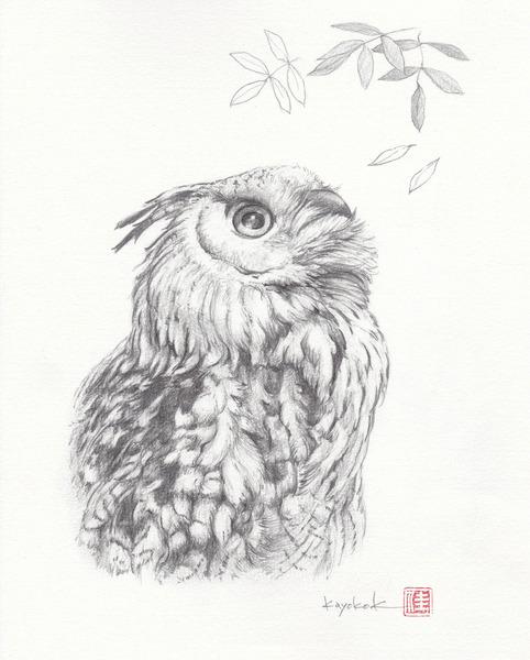 Zoo-portrait 04-