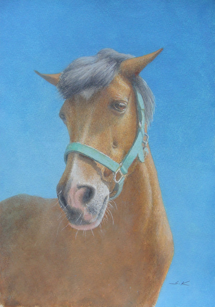 或る馬の肖像-a8