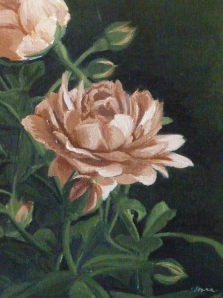 黄色い花 1