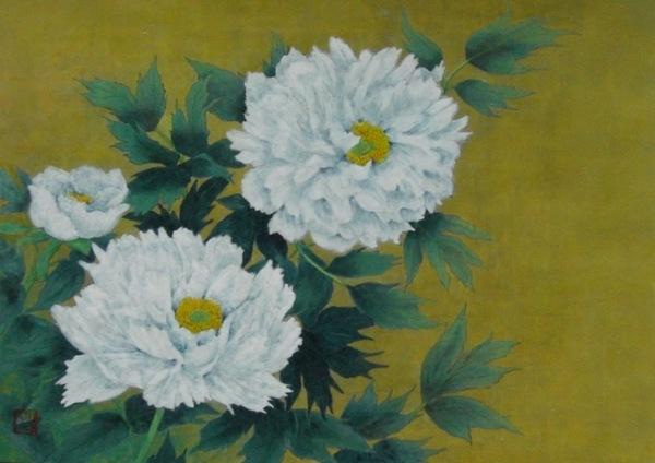 富貴花(白牡丹)