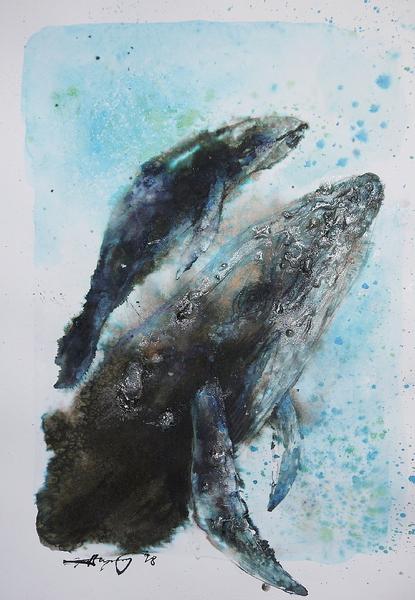 クジラの親子2018