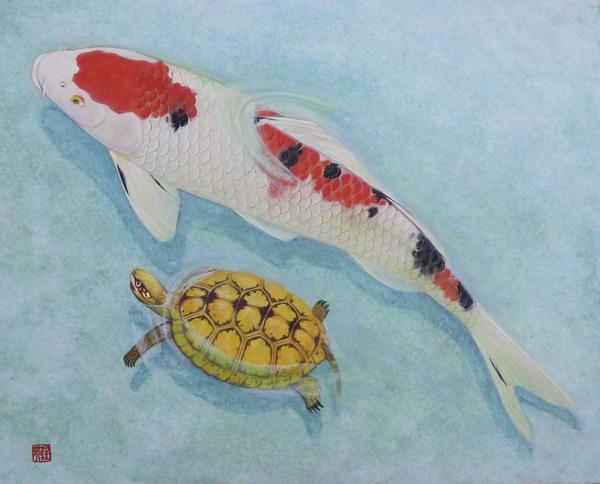 錦鯉、金亀と遊ぶ