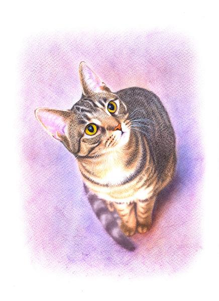 キジトラ猫・4