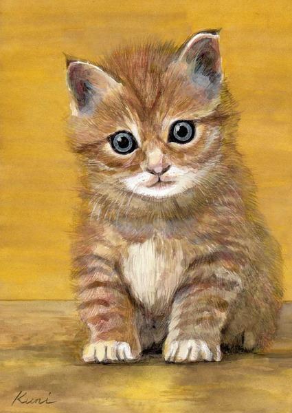 子猫 キョトン!