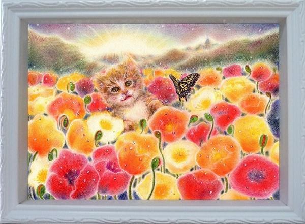 子猫と陽だまりポピー