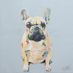 「French bulldog」